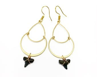 Fossilized petite shark tooth on tear drop hoop earrings