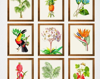 Botanical Garden Gallery Wall, Tropical Wall Art, Botanical Archival Prints, Dining Room Art, Giclee Prints,
