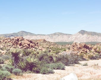 Desert photography, joshua tree, california photography, desert decor, desert wall art, southwestern decor, large wall art, desert art, boho