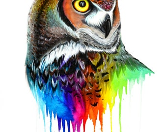 Rainbow owl- original
