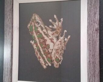 Frog Cross Stitch (Motorbike Frog) - framed