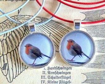 Robin Robins chain