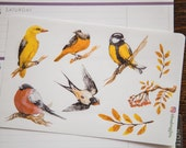 Winter birds - functional watercolour nature planner stickers suitable for any planner -215-