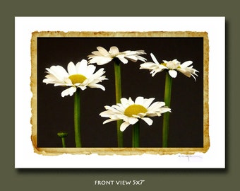 White Dasies:Spring Flowers-Note-Greeting-Card-Botanical-Vintage Look-Flower-Flowers-Hand Signed-Art-Print-Gift-Wall Art-Decor-Photo-Love