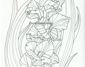 coloring page g of gladiolus flower direct download