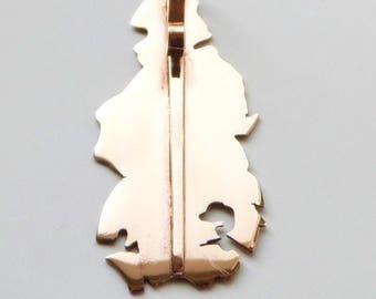 Bronze Fallen leaf pendant