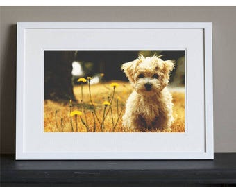 Cross Stitch Pattern - Dog - Cute Terrier Puppy - Instant Download