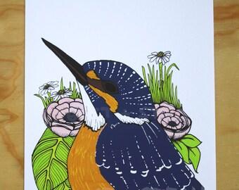 Fisherman, A4 Fine art print of New Zealand Kingfisher bird