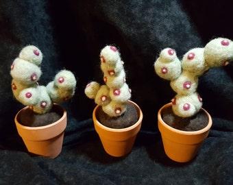 Harry Potter inspired Needle Felted Mimbulus mimbletonia plant