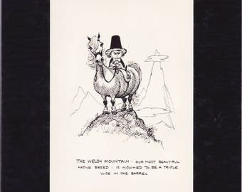 A Norman Thelwell delightfully humorous, 1962 pony cartoon book print, mounted/matted ready to frame