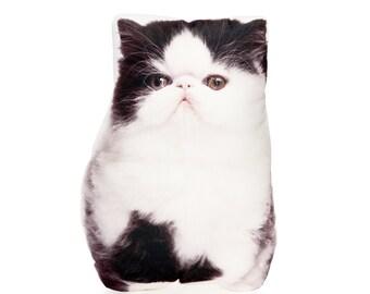 Persian Cat, Persian, Cat Lady, Cat Pillow, Cat Cushion, Cat lover Gift Cat Decor, Feline, Funny Cat, Pet Loss Gift, Cat Present, Cat Gift