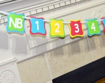 Beach Ball Newborn to 12 Month Photo Banner, Beach Ball Photo Banner, 1 year photo banner, First Birthday Photo Banner