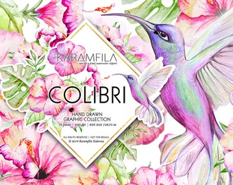 Tropical Clipart, Hawaii Clipart, Summer Clipart, Exotic Birds Hibiscus Clipart Planner Girl Flowers Illustrations Watercolor Hummingbird