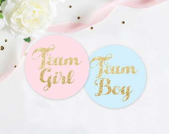 Gender Reveal Party Stickers, Team Pink Team Blue Stickers, pink and blue party, team girl and team boy stickers, sticker set
