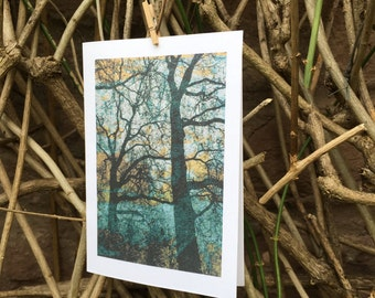 Tree Greetings Cards