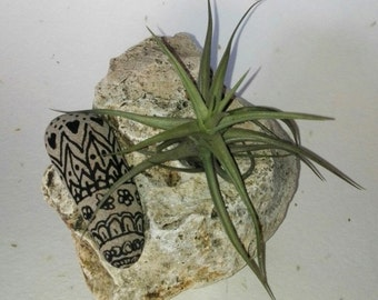 FLORAL SET with limestone rock, air plant and hand-decorated STONE style mandala