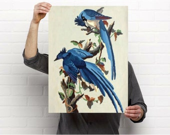 Paint by Number Poster: Blue Jays, Enlarged Prints of Vintage Paint by Number Blue Birds