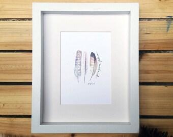 Peregrine Falcon Feathers // Watercolor Print
