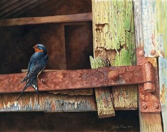 "Swallow on Rusty Hinge // A3 10.5"" x 15.5"" Archival Giclee Print // Watercolour Wildlife Art // Sean Milne Prints"