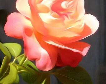 Digitally Enhanced 8x10 Photo Print - Pink Rose