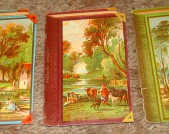 3 Pieces of Victorian Scrap (Books)