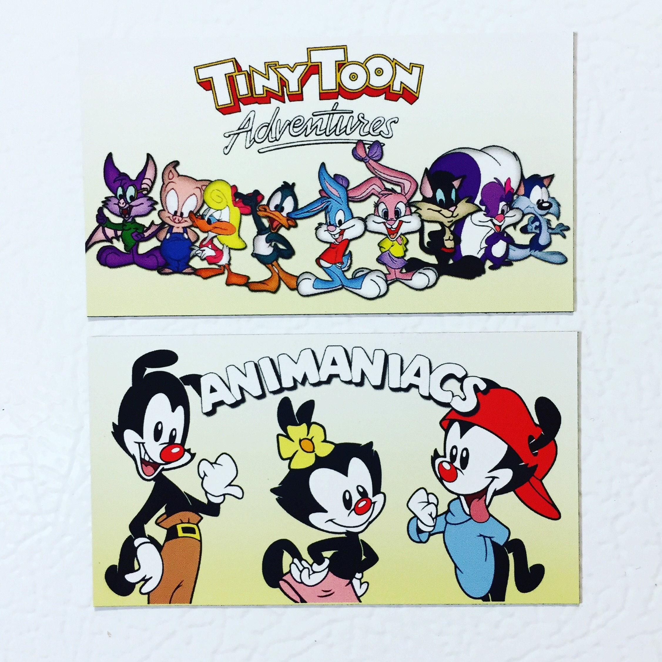 magnet set tiny toon adventures u0026 the animaniacs wb network