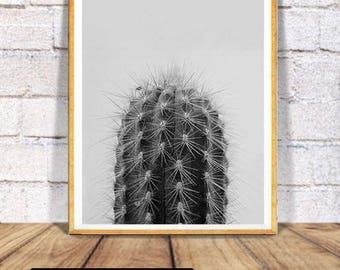 Cactus Print,  Large Printable Poster, Black and White Wall Art, Arizona Desert Photo, Modern Minimalist Contemporary,Digital Download