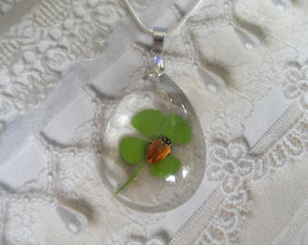 Real Ladybug (No Spots!) Real 4 Leaf Clover Large Glass Teardrop Pendant-Symbol Of Love,Hope,Faith,Luck-Nature's Wearable Art-Gifts Under 35