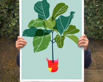 Fiddle Leaf Fig Tree 2 - Tropical leaf print / high quality fine art print