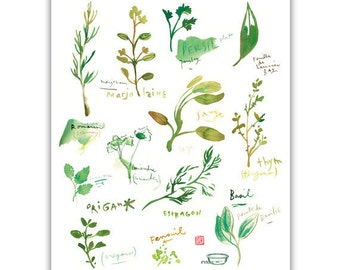 Herb print, Watercolor herbs, Kitchen print, Botanical poster, Kitchen decor, Green wall decor, Garden print, Basil, Rosemary, Culinary art