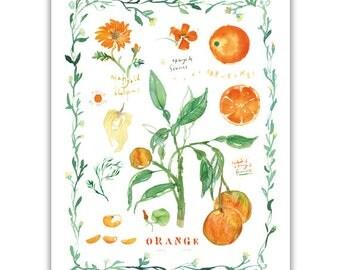 Orange tree and oranges print with leaf border, Kitchen decor, Fruit illustration, Food art poster, Botanical print, Watercolor painting