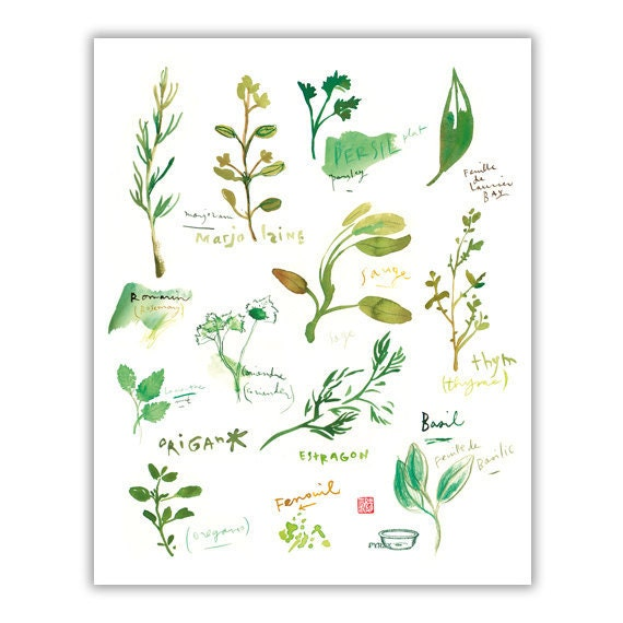Herb print watercolor herbs kitchen print botanical poster - Herbe aromatique cuisine ...