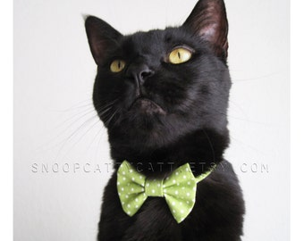 Cat Bow Tie - Spring Meadow