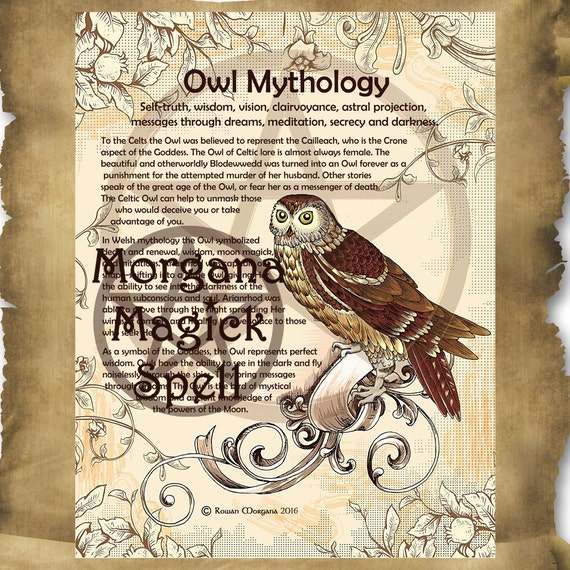 Owl Mythology