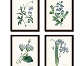 Blue Botanical Print Set No. 10, Redoute Botanical Prints, Art Giclee Botanical Prints, Blue Flower Prints,Collage, Illustration, Flowers