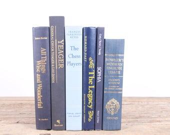 Vintage Blue Books / Old Books Vintage Books / Decorative Books / Antique Books / Mixed Book Set / Books by Color / Books for Decor