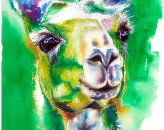"11x14"" Llama Watercolor Giclee Fine Art Print [Watercolor Llama Print, Llama Print, Llama Art, Green Art, Watercolor Art]"