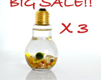 Big Sale!! Three Marimo Moss Ball Light Bulb Aquariums // Gift Ideas, Surprise Gift, Birthday Gift, Wedding Gift, Home Decor, Wedding Favors