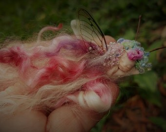sweet fairy fairies   in  shell with dragonfly wings   tiny  ooak