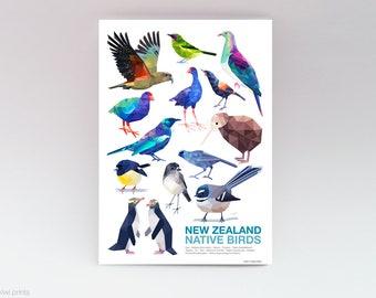 New Zealand bird print, Native NZ birds, New Zealand classroom poster, Tui art, Kiwi art, New Zealand art, Kiwiana art, Fantail, Kereru art