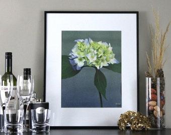 Blue Hydrangea Flower Art Print Illustration