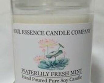 Waterlily Fresh Mint