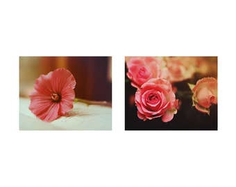 Romantic wall Art Coral Flower Pictures set of 2 Fine Art Photography Peach Flowers Art Girly Wall Art 2 prints Rose Photography Prints Art