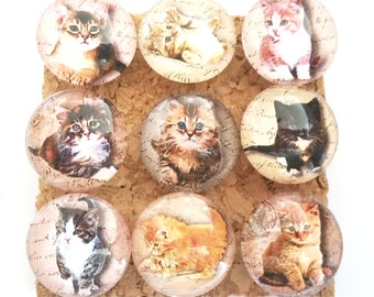 Kitten Push Pins, Decorative Baby Kittens, Cats, Kittens,  Little Kittens, Kitten Thumb Tacks, Baby Kittens Push Pins, Office, Home Decor
