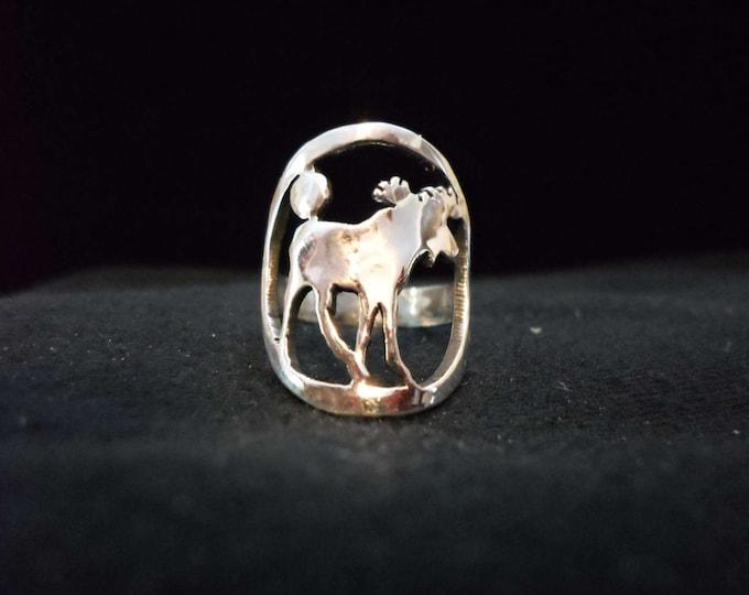 moose ring quarter size