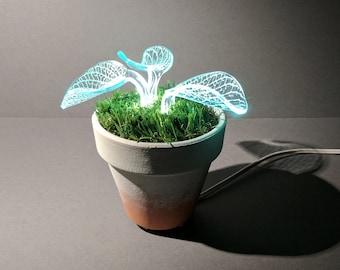 Housewarming Gift, Floor Lamp, Small Lamp, Table Lamp, Night Light, Led Lamp, desk lamp, Accent Light, Light Fixture, Kids Lighting