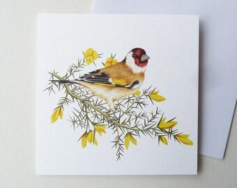 Goldfinch Bird Card