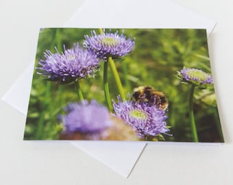 Flower and Bee Greeting Card, Bumble Bee, Wild Flowers, Birthday Card, Note Card, Photo Art, Naturalist, For Her, countryside, Nature art