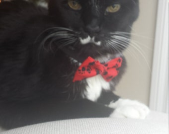 Formal Wear for Cats (Bow Tie)