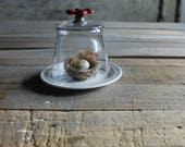 RESERVED - Glass Cloche with Vintage Red Faucet Knob